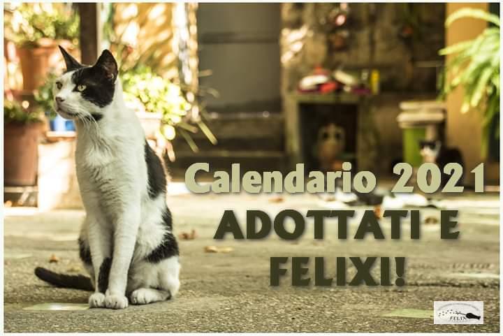 Adottati e Felixi!!! Le vostre foto dei felixini a casa